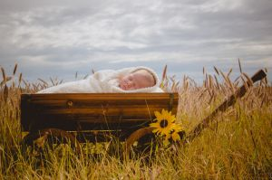 Dust to Dawn Photography Children 2015  (1)-c52.jpg